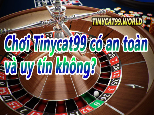 Chơi Tinycat99 có an toàn và uy tín không?